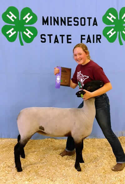 Kullas Suffolks, Lambs, Sheep, Registered, For Sale, Breeding, Show, Champion, National, Quality, Flocks, Producers, Healthy, Production, Sales, Ewe, Sire, Replacement, Bob Kimm, BreedingSheepPage.com, Genetics, Rams, Yearlings, Aged, Lots, Bloodlines, United States, Mid West, Minnesota, Missouri, Mississippi, conception, reproductive, NSIP, Records, Distinguished, State Fair Reserve Champion, Winner, Best of Show, Suffolk Sheep Association, 4-H, consignment, Records, trusted, honest, family, caring, experienced, NSIP.org, Values, Jon, Houston County, Rochester, Iowa, Wisconsin